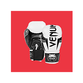 boxing_gloves_elite_ice_500