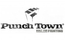 punchtown logo