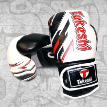 perchatki-bokserskie-trenirovochnye-takeshi-fight-gear